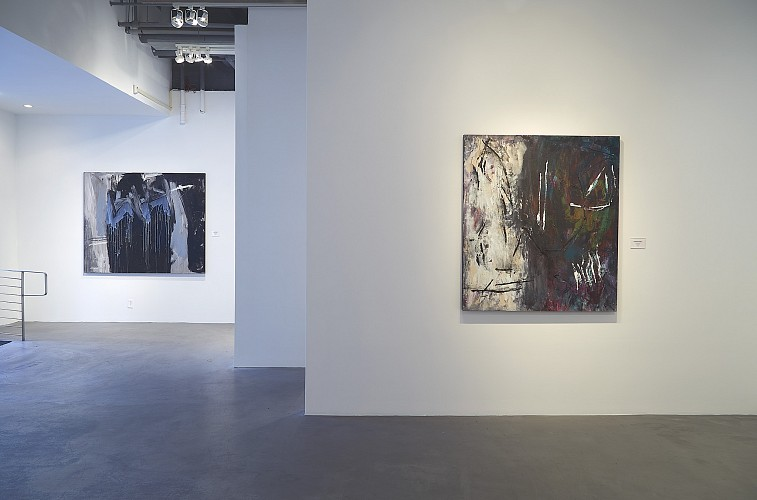 Ann Purcell: Kali Poem Series - Installation View